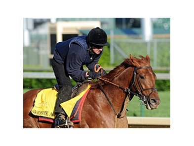 "Awesome Act<br><a target=""blank"" href=""http://www.bloodhorse.com/horse-racing/photo-store?ref=http%3A%2F%2Fpictopia.com%2Fperl%2Fgal%3Fprovider_id%3D368%26ptp_photo_id%3D8929317%26ref%3Dstory"">Order This Photo</a>"