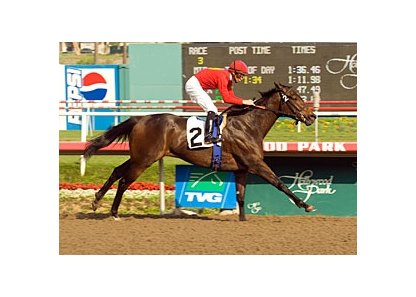 "Odds-on favorite Foxy Danseur drew off to a 2 3/4-length win in the Sharp Cat.<br><a target=""blank"" href=""http://www.bloodhorse.com/horse-racing/photo-store?ref=http%3A%2F%2Fpictopia.com%2Fperl%2Fgal%3Fprovider_id%3D368%26ptp_photo_id%3D2809510%26ref%3Dstory"">Order This Photo</a>"