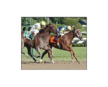 Harmony Lodge, shown winning the Ballerina, seeks fourth straight stakes win.