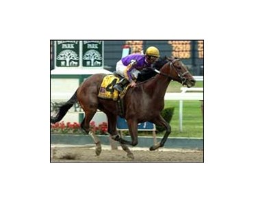 "Woody Stephens' winner Teuflesberg will try for two in a row in the Carry Back.<br><a target=""blank"" href=""http://www.bloodhorse.com/horse-racing/photo-store?ref=http%3A%2F%2Fpictopia.com%2Fperl%2Fgal%3Fprovider_id%3D368%26ptp_photo_id%3D1393781%26ref%3Dstory"">Order This Photo</a>"
