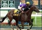 Woody Stephens winner Teuflesberg to try his foot at the turf this weekend at Saratoga.