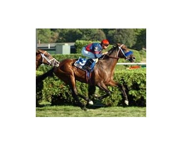 "Longshot Mission Approved in Saranac surprise.<br><a target=""blank"" href=""http://www.bloodhorse.com/horse-racing/photo-store?ref=http%3A%2F%2Fpictopia.com%2Fperl%2Fgal%3Fprovider_id%3D368%26ptp_photo_id%3D2168340%26ref%3Dstory"">Order This Photo</a>"