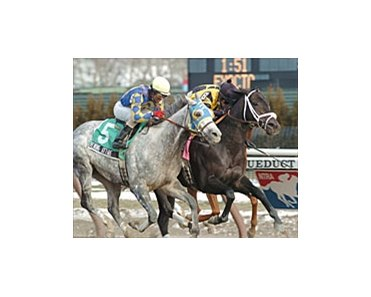 Seattle Fitz, inside, edges out Evening Attire to win Saturday's Aqueduct Handicap.