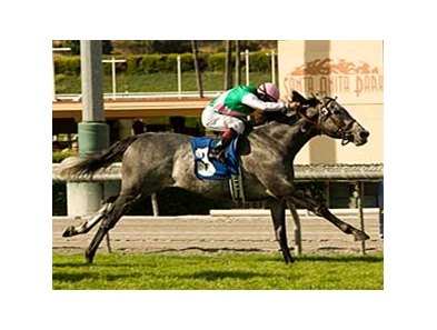 "Midships had the lead at every call in the San Juan Capistrano. <br><a target=""blank"" href=""http://www.bloodhorse.com/horse-racing/photo-store?ref=http%3A%2F%2Fgallery.pictopia.com%2Fbloodhorse%2Fgallery%2F69713%2Fphoto%2F8020757%2F%3Fo%3D0"">Order This Photo</a>"