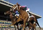 Porter on Pedigrees: Woodbine Turf Wonders