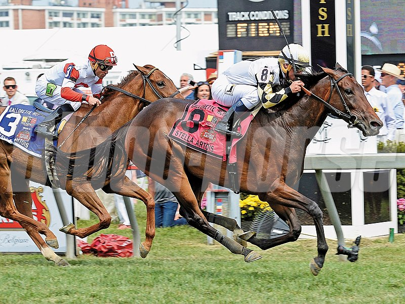 After hitting the board but missing out on victory in her last 10 graded stakes tries, Watsdachances broke through in the $150,000 Gallorette Handicap (gr. IIIT)  at Pimlico Race Course.