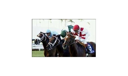 Go Between (right) edges out Up an Octave (center) and Devil's Preacher to win the Palm Beach Stakes at Gulfstream Park.