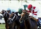 Go Between Rides Rail to Palm Beach Victory