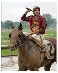Both rider Willie Martinez and Stars and Glitter are covered in mud after winning the 4th race in front of a record crowd on a rain-soaked opening day at Ellis Park.