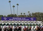 Breeders' Cup Drug Samples All Clear