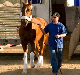 Curlin En Route to California