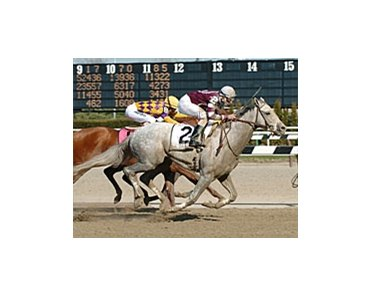 Kentucky Derby contender Tapit, winning the Wood Memorial.