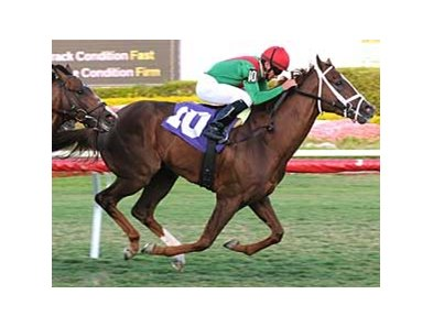Kinsella broke his maiden at Gulfstream Park on March 14.
