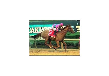 Mr Ross, en route to his upset victory in the Razorback Handicap at Oaklawn Park on Saturday.