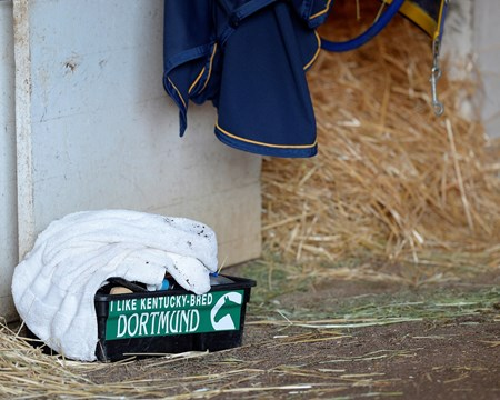 Caption: tack box outside Dortmund's stall in barn 33