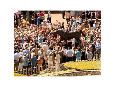 The crowd gathers to see the Zenyatta statue at Santa Anita.
