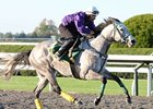 Forever Together training at Keeneland October 7.
