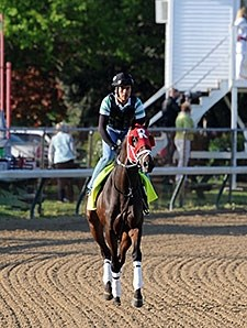 International Star at Churchill Downs 4.29.15.