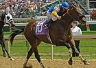 Trickey Trevor won in the 2006 Churchill Downs Handicap (gr. II).