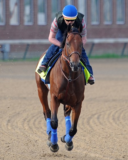 With two weeks to go before the Derby, probable favorite American Pharoah, George Alvarez up,  has his first gallop at Churchill Downs.