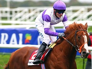 Crowded House a Euro Classic Hopeful