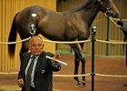 Keeneland Yearling Sale Surpasses 2010 Total