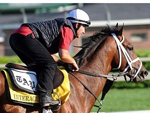 Three Work for Belmont; Interactif in Field