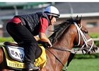 Interactif in Bullet Work; Derby Unlikely