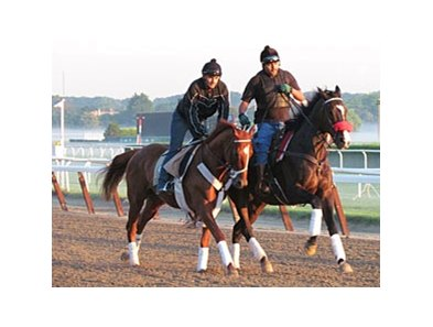 I'll Have Another went for an early gallop on June 8 at Belmont.