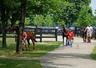 F-T Day Two: Yearlings to Watch