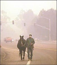 Facilities Take in Horses as California Wildfires Rage