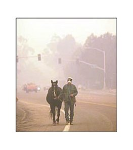 Joe Matyas walks his horse, Bart, to safety amidst a heavy cloud of smoke as out of control wildfires also threaten the safety of the Southern California horse population.