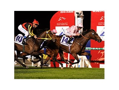 Dar Re Mi takes the Dubai Sheema Classic.