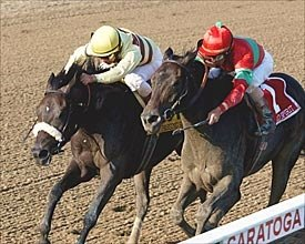 Passing Shot Shocks Wild Spirit in 'Ensign