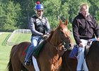 "Animal Kingdom at Fair Hill.<br><a target=""blank"" href=""http://www.bloodhorse.com/horse-racing/photo-store?ref=http%3A%2F%2Fpictopia.com%2Fperl%2Fgal%3Fprovider_id%3D368%26ptp_photo_id%3D9523208%26ref%3Dstory"">Order This Photo</a>"