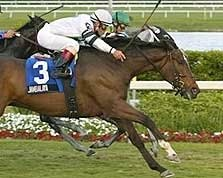 Jambalaya Jumps Up in Gulfstream Turf Surprise