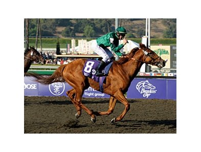 "Breeders' Cup Classic winner Raven's Pass<br><a target=""blank"" href=""http://www.bloodhorse.com/horse-racing/photo-store?ref=http%3A%2F%2Fpictopia.com%2Fperl%2Fgal%3Fprovider_id%3D368%26ptp_photo_id%3D6465541%26ref%3Dstory"">Order This Photo</a>"