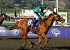 "Breeders' Cup Classic winner Raven's Pass is nominated for Europe's Horse of the Year Award. <br><a target=""blank"" href=""http://www.bloodhorse.com/horse-racing/photo-store?ref=http%3A%2F%2Fpictopia.com%2Fperl%2Fgal%3Fprovider_id%3D368%26ptp_photo_id%3D6465542%0D%0A%26ref%3Dstory"">Order This Photo</a>"