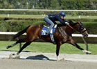 Tiznow colt turns in impressive work.