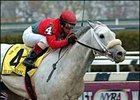 Silver Wagon Pulls Away in Carter Handicap