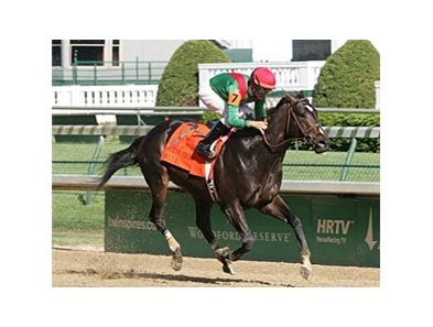 The undefeated Hull is among nine 3-year-olds entered in the $250,000 Woody Stephens (gr.II) at Belmont Park.