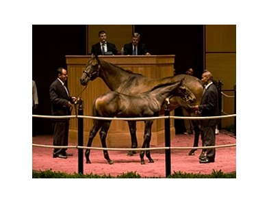 Richbabe and her Street Sense colt brought the top price of $240,000 during the first phase of the Bill and Corinne Heiligbrodt's dispersal.