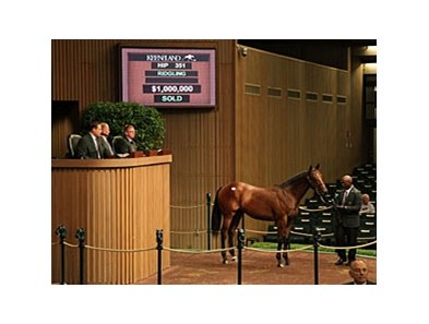 Hip #351, ridgling, Smart Strike - Ask Me No Secrets by Seattle Slew, brought $1,000,000 to top the third day of the Keeneland September yearling sale.
