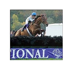 "McDynamo captures his fifth consecutive Breeders' Cup Grand National.<br><a target=""blank"" href=""http://www.bloodhorse.com/horse-racing/photo-store?ref=http%3A%2F%2Fpictopia.com%2Fperl%2Fgal%3Fprovider_id%3D368%26ptp_photo_id%3D2568180%26ref%3Dstory"">Order This Photo</a>"