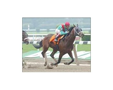 "King of the Roxy won the Futurity at Belmont.<br><a target=""blank"" href=""http://www.bloodhorse.com/horse-racing/photo-store?ref=http%3A%2F%2Fpictopia.com%2Fperl%2Fgal%3Fprocess%3Dgallery%26gallery_id%3DS279373%26provider_id%3D368%26ptp_photo_id%3D565568%26ref%3Dstory"">Order This Photo</a>"