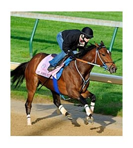 "St. John's River worked five furlongs in 1:00 4/5 at Churchill Downs on April 28.<br><a target=""blank"" href=""http://www.bloodhorse.com/horse-racing/photo-store?ref=http%3A%2F%2Fpictopia.com%2Fperl%2Fgal%3Fprovider_id%3D368%26ptp_photo_id%3D9505352%26ref%3Dstory"">Order This Photo</a>"