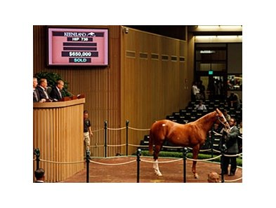 Top seller on day 4 of the Keeneland September yearling sale, hip #730, colt; Tapit - Don'tellmichelle by Regal Classic, brought $650,000.