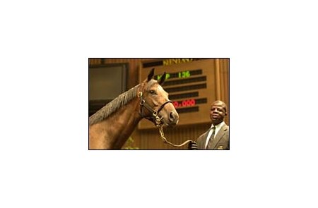Seeking the Gold filly sold for $3.7 million.