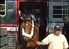 Afleet Alex, shown arriving at Belmont Park, had a strong three-mile gallop Monday.
