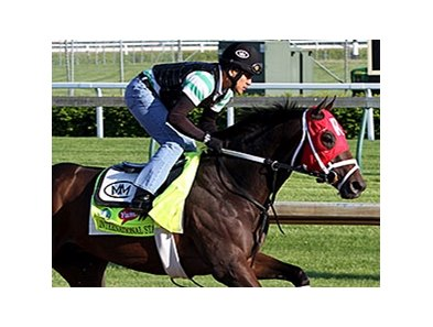 "International Star<br><a target=""blank"" href=""http://photos.bloodhorse.com/TripleCrown/2015-Triple-Crown/Kentucky-Derby-Workouts/i-P4WDJGC"">Order This Photo</a>"